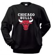 Реглан Chicago Bulls