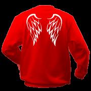 Реглан Крылья ангела